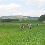 Day 6: Alcalá la Real – Tózar, 13-26 km