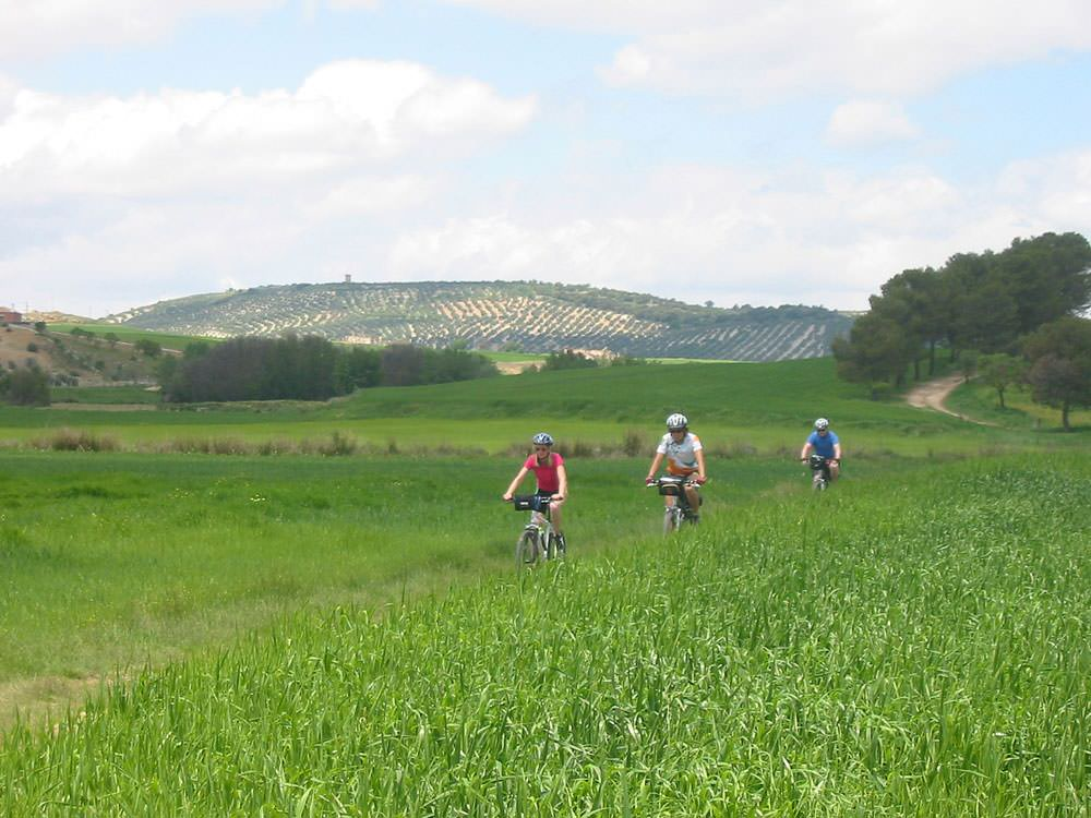 Cycling from Córdoba to Granada on the Route of the Caliphate