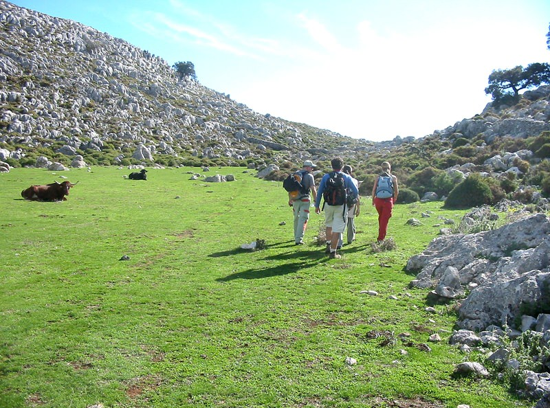 Walking between Ronda and Tarifa (Almoravids' Route)