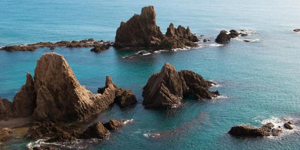 Between volcanoes and cactus (Cabo de Gata)