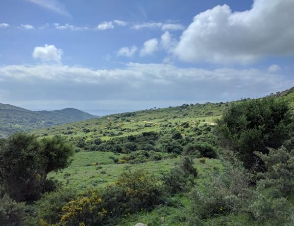 Strait of Gibraltar Natural park