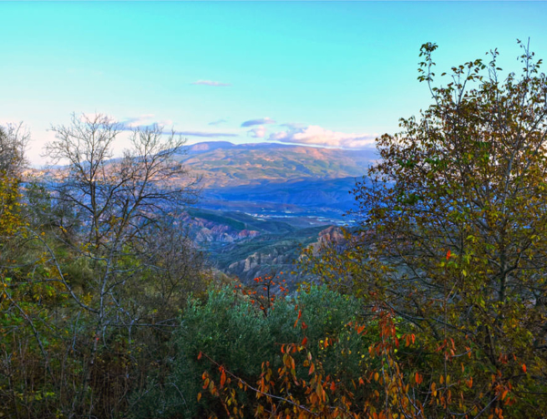 "Guided Walking ""South from Granada"" (Alpujarras)"