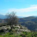 Yegen-Yegen (14 km)