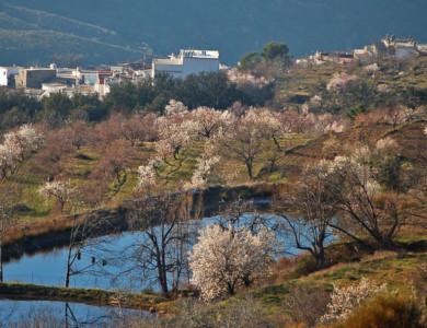 "Guided Walking ""South from Granada"" (Alpujarras)"