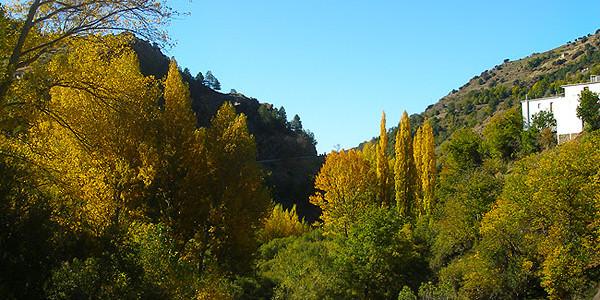 Busquístar -Trevélez (11 km)