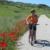 77 Califato Bici Via Verde Del Aceite Alcaudete