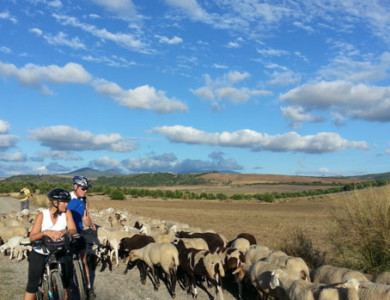 Cycling from Granada to Ronda (Route of the Almoravids & Almohads)