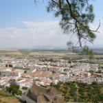 Arcos de la Frontera – Jerez de la Frontera (41 km)