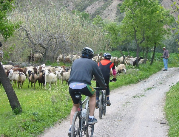 266 Alpujarra Paseo Brenan Bici Yegen Ugijar Viajeros