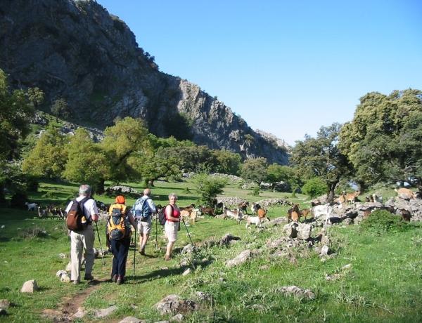 Hiking In Grazalema
