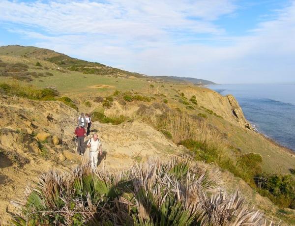 504 Almoravides Sendero Tren Bici Parque Estrecho Tarifa Viajeros