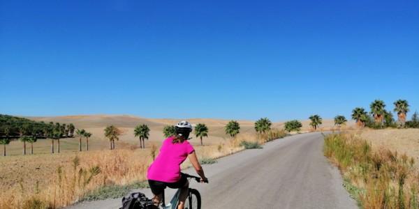 From Granada to Cordova on a bike on the Camino de Santiago