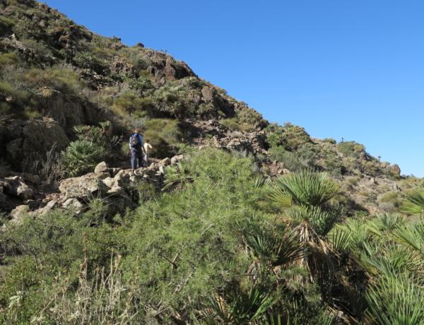 Cabo De Gata Barranco Requena
