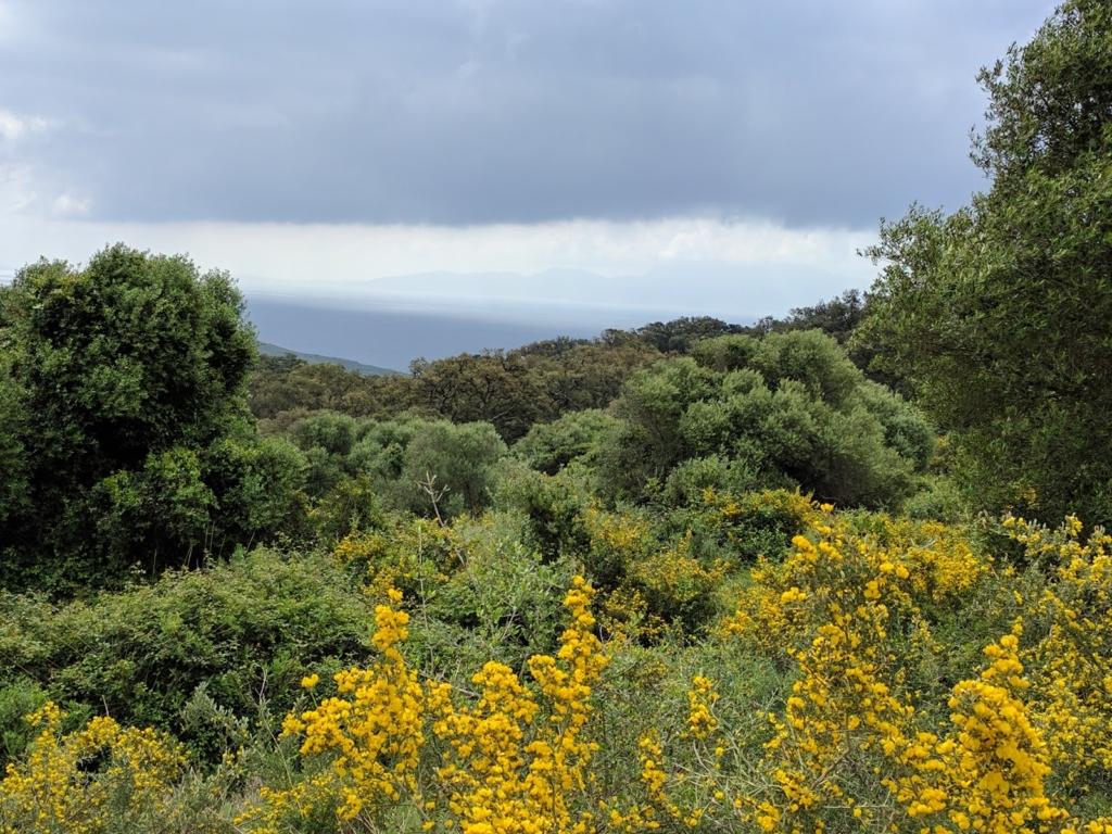 Nature Park El Estrecho