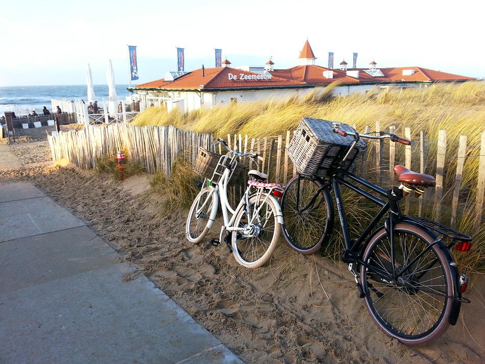 Junto A La Playa De Noordwjik, Ambientazo Navideño