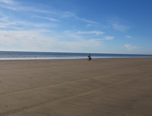 Beach Of Doñana National Park