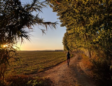 Experience the Lands of Lorca on a bike (26-31 km)