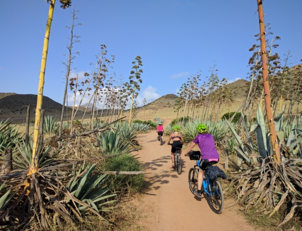Cycling Cabo De Gata Between Cactus